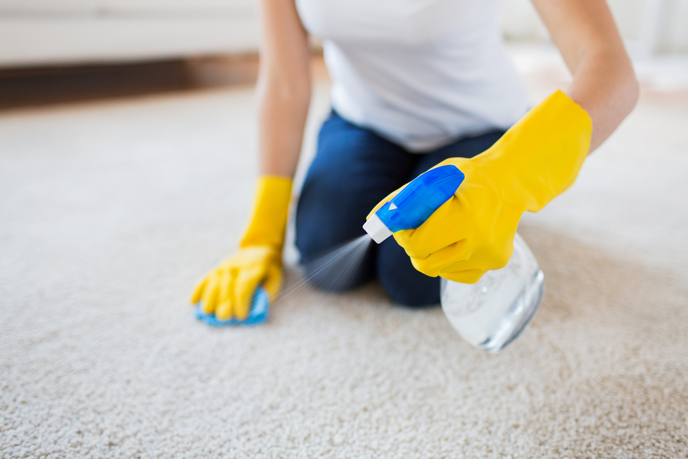 Professional Cleaning Carpet